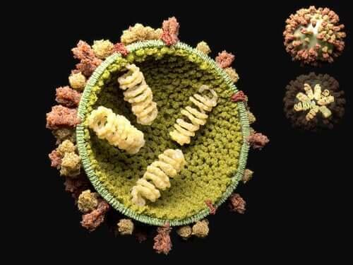Viras reproduktionscyklus