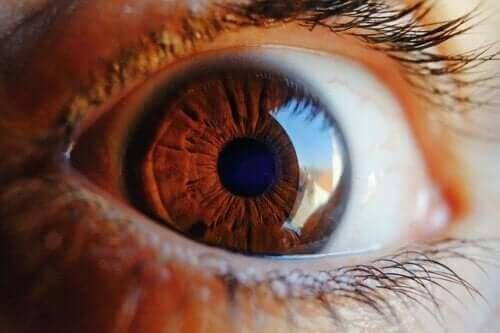Find ud af, hvordan øjnene renser sig selv