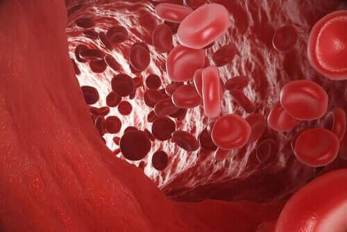 Røde blodlegemer i blodåre viser kulilteforgiftning