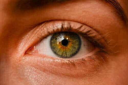 Okulære melanomer - er fregner i øjnene farlige?