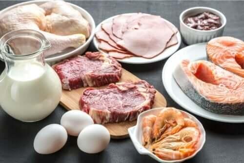 Fødevarer med proteiner