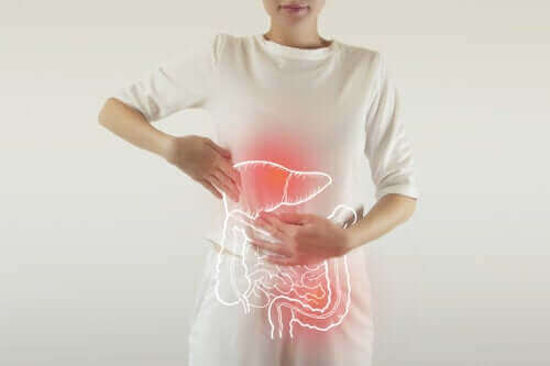 Fordøjelsesenzymer: Hvad gør de?