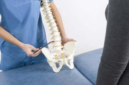 Læge med model af rygrad