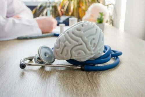 Model af hjerne på læges bord