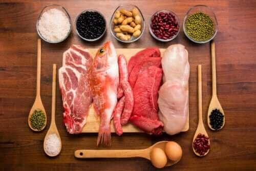 Alt om proteiners funktion i vores kroppe