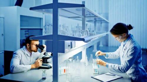 Personer i laboratorie undersøger resultaterne fra en sædanalyse