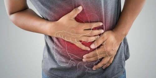 De hyppigste symptomer ved inflammatorisk tarmsygdom er svær kolik og kronisk blodig diarré