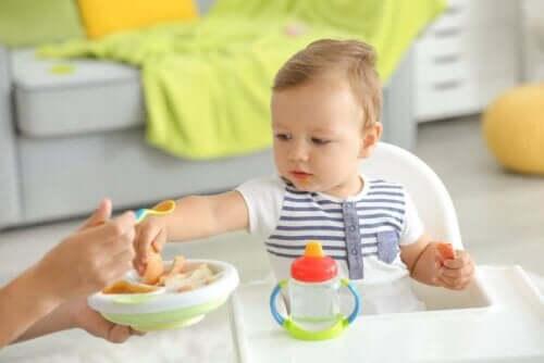 Baby spiser af skål