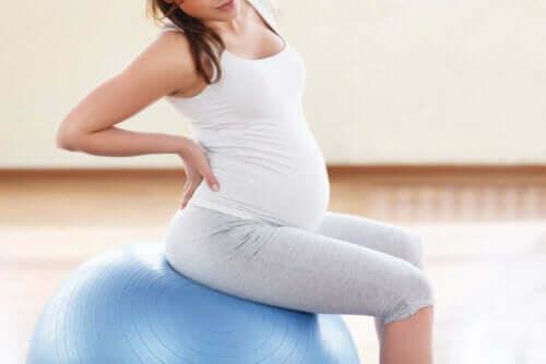 Gravid kvinde på yogabold