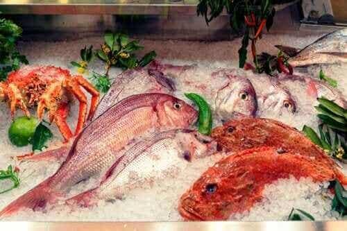 Alt om effekterne af kviksølv i fisk
