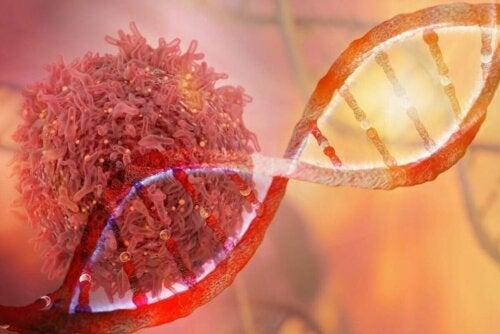 Illustration af kræftceller