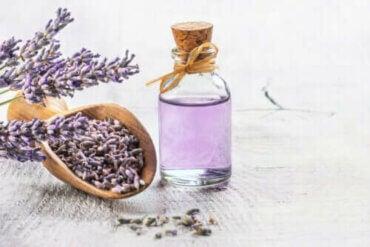 De 6 bedste medicinske planter med videnskabelig evidens