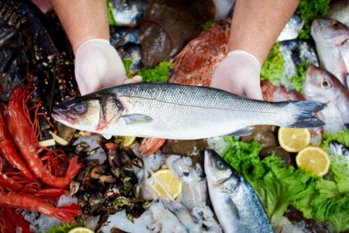 Rå fisk symboliserer effekterne af kviksølv