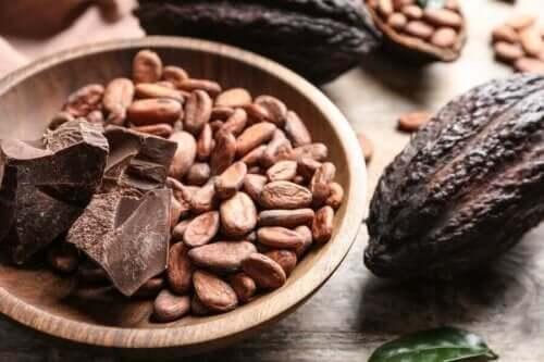 Kakaobønner og chokolade