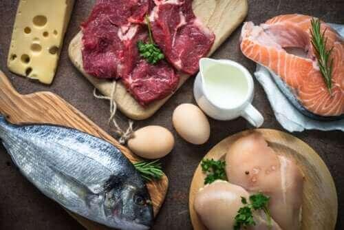Hvorfor er det så vigtigt at indtage proteiner?
