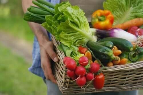 Grøntsager er fødevarer fattige på natrium