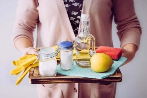 Person med bakke fyldt med naturlige rengøringsmidler