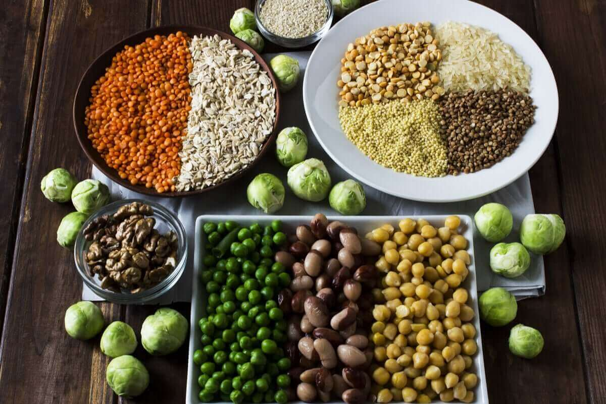 Plantebaserede proteiner bør også indgå i vores kost, men det er mindre fordøjeligt end animalsk protein