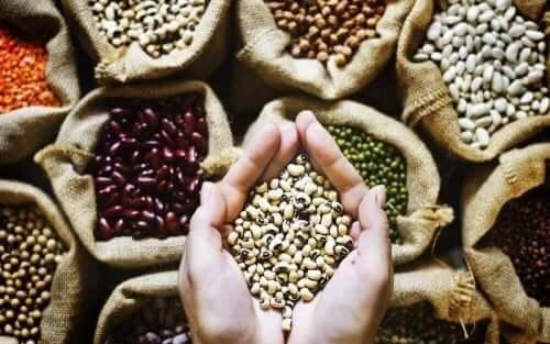 Forskellige bælgfrugter i poser og hænder