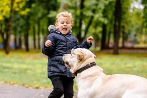 Mit barn er bange for dyr: Hvad skal jeg gøre?