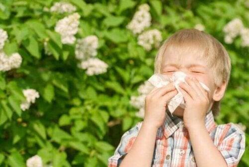 Dreng nyser som eksempel på gængse allergier hos børn