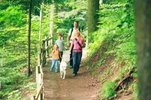 Familie på skovtur som eksempel på gode udendørs aktiviteter til efteråret
