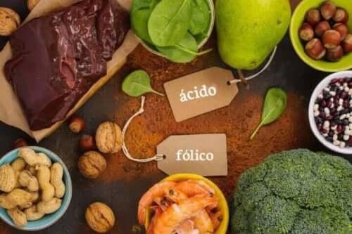 Fødevarer med højt indhold af folsyre