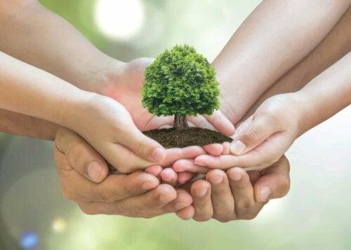 10 tips til at passe på miljøet derhjemme