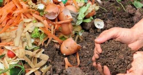 Hjemmelavet kompost for at passe på miljøet