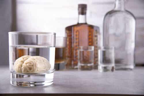 Hjerne i glas med gennemsigtig væske