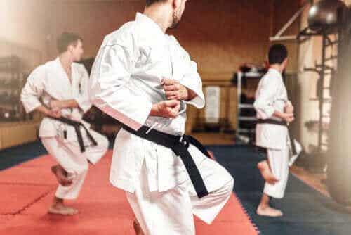 Forskellene på karate og taekwondo