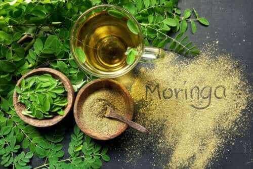Moringaolie: Egenskaber og anvendelse