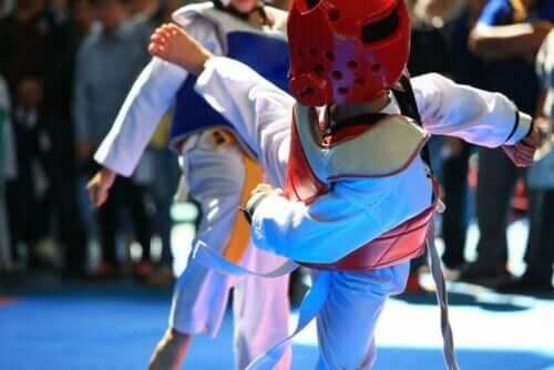 Taekwondo-kamp