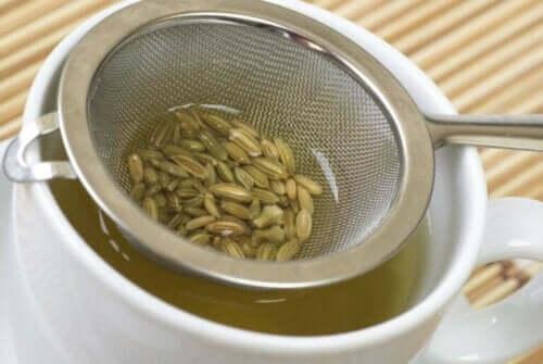 Te af fennikelfrø
