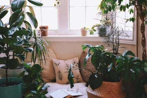 Idéer til at skabe et afslappende hjørne derhjemme