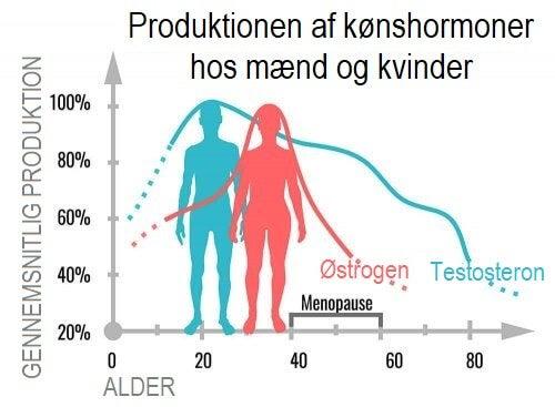 Hvad gør kønshormoner egentlig?
