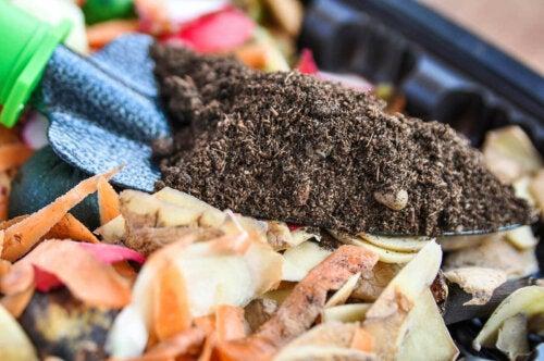 Person laver kompost til en bæredygtig have