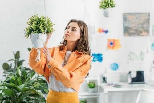 Sådan kan man lave hængepotter til planter