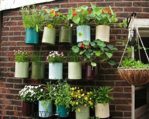 Planter hænger i dåser som eksempel på en have på terrassen