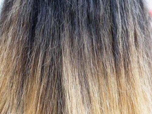 Nærbillede af slidt hår