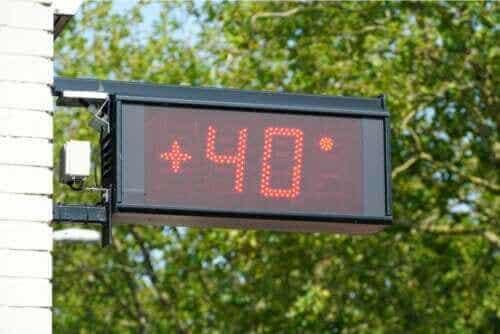 Sådan påvirker ekstreme temperaturer kroppen