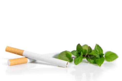 Mentolcigaretter kan være mere skadelige end almindelige