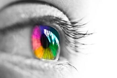 Karakteristika ved menneskets farvesyn