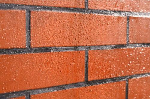 Sådan kan man beskytte mod skimmelsvamp på murstensvægge