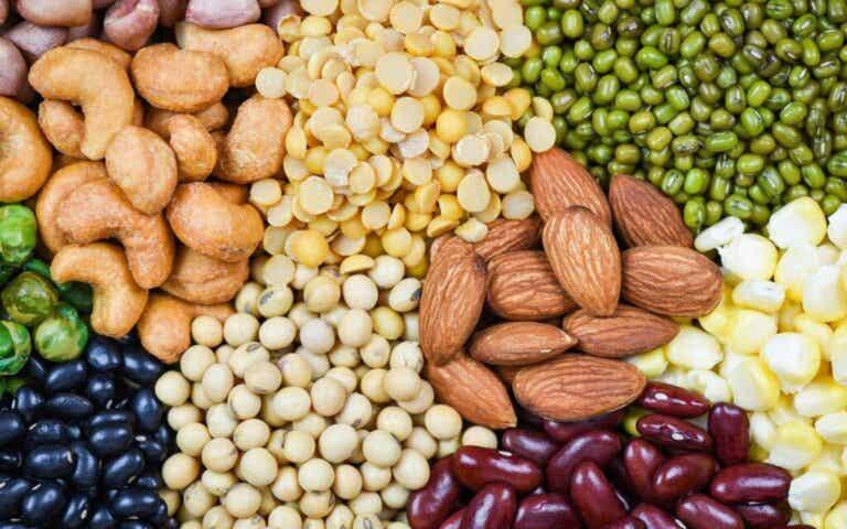 Hvorfor det er vigtigt at vide, hvad antinæringsstoffer er?