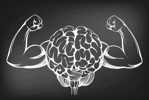 Tegning af en stærk hjerne