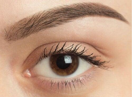 Hvorfor fælder øjenbrynshår?